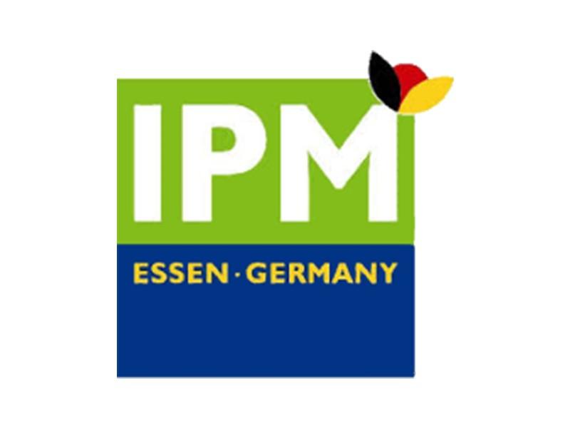 IPM Essen